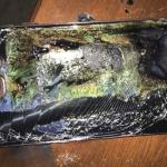 Samsung masih belum pasti apa penyebab bateri Note 7 terbakar
